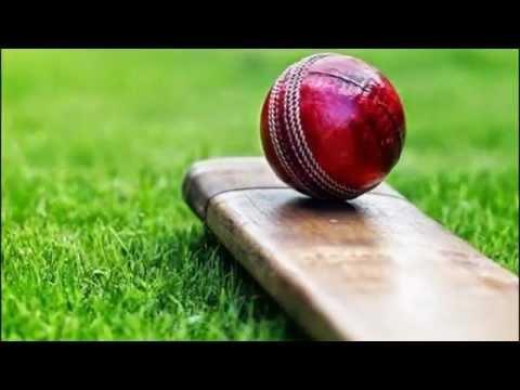 Red Cricket Ball on a Cricket Bat